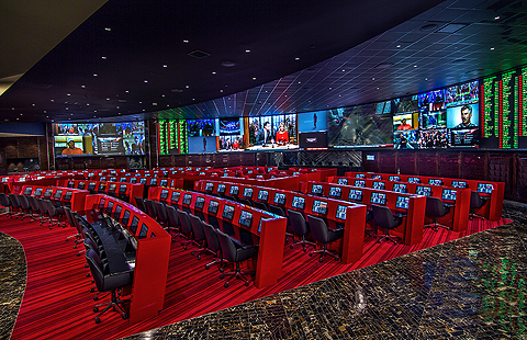 sports and sports the palms sportsbook