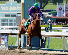 California Chrome is the Morning Line Favorite for the 2014 Kentucky Derby