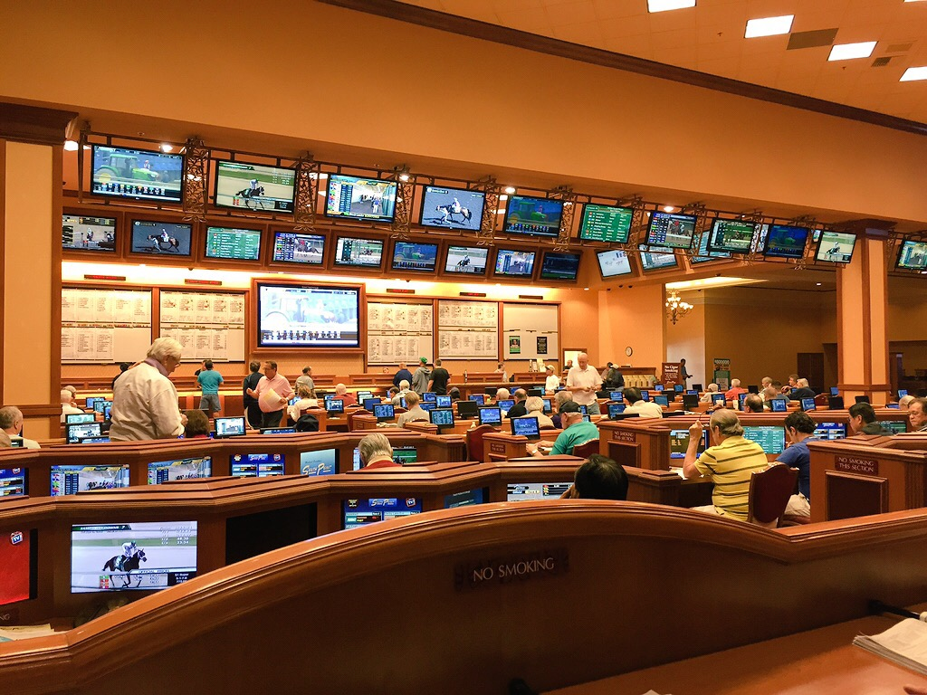 South Point Sports Book Has  A Separate Horse Racing Area